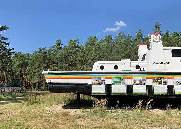 Beluga, Gorleben, Niedersachsen, Deutschland, August 2020